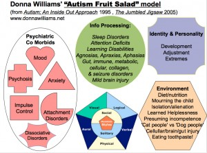 Donna Williams' Fruit Salad Model of Autism