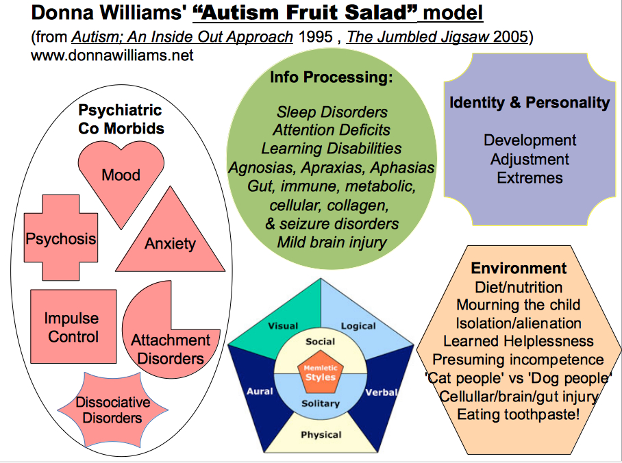 Pollys pages aka donna williams blog archive what is autism donna williams fruit salad model of autism publicscrutiny Gallery